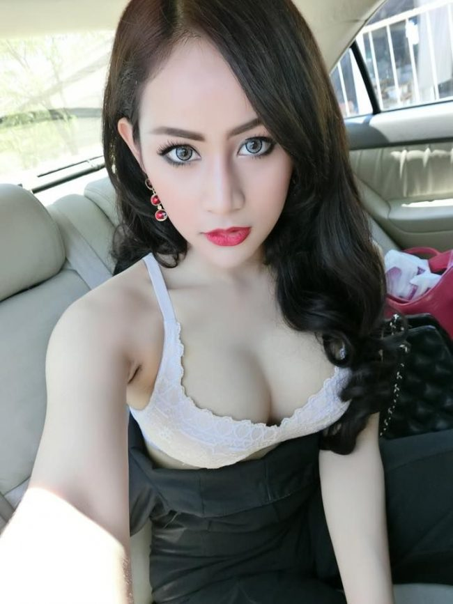 Asian thai and vietnam ladyboys